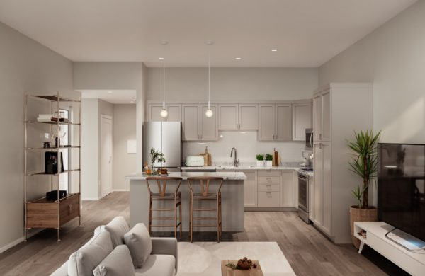 Kitchen & Living Space